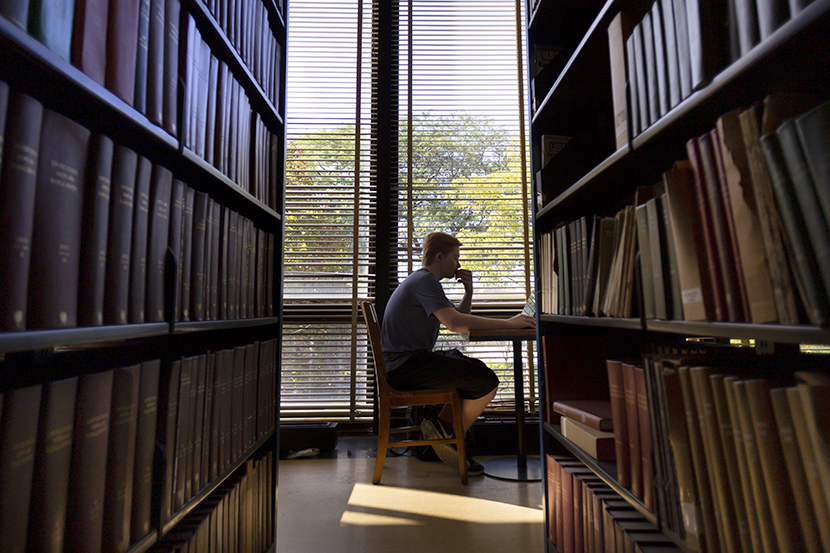 A student studying in Gavlin Library