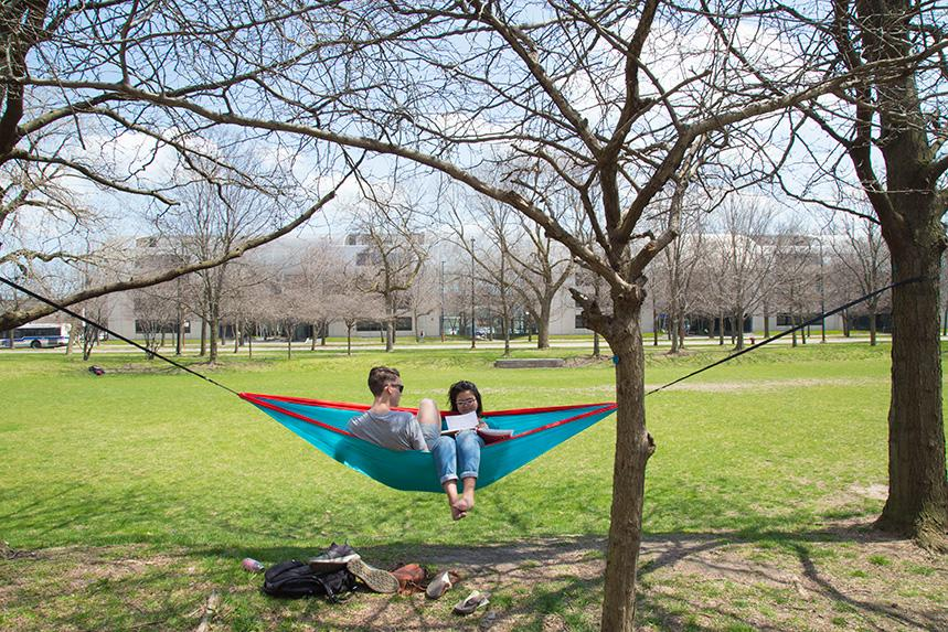 Two students sitting in a hammock on Mies Campus