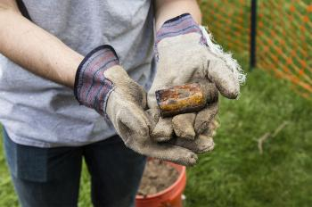 Artifacts from Historic Mecca Flats Discovered on Mies Campus