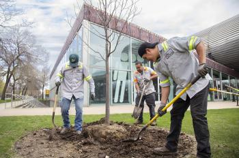 Illinois Tech Celebrates Arbor Day with Massive Campus-Wide Tree Planting Initiative