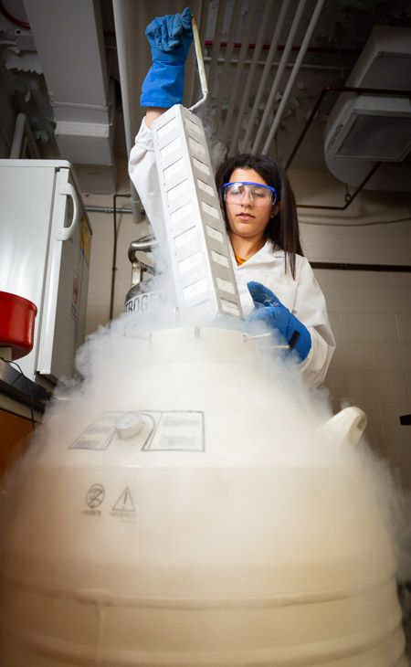 Jasmine Baste in a lab retrieving samples from liquid nitrogen