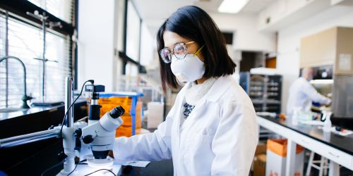 An graduate student working in a science lab