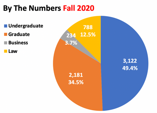 Fall 2020 By The Numbers Pie Graph