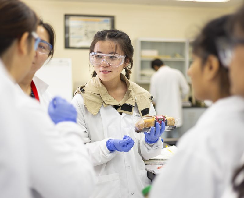 Students test for bacteria on commercially prepared foods.